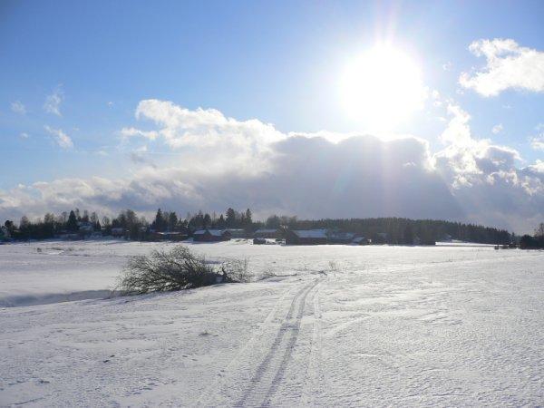 KOKO_peltomaisema_talvella